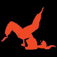M.I.A. Studio - Feldenkrais & Pilates